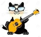 guitar cat 3
